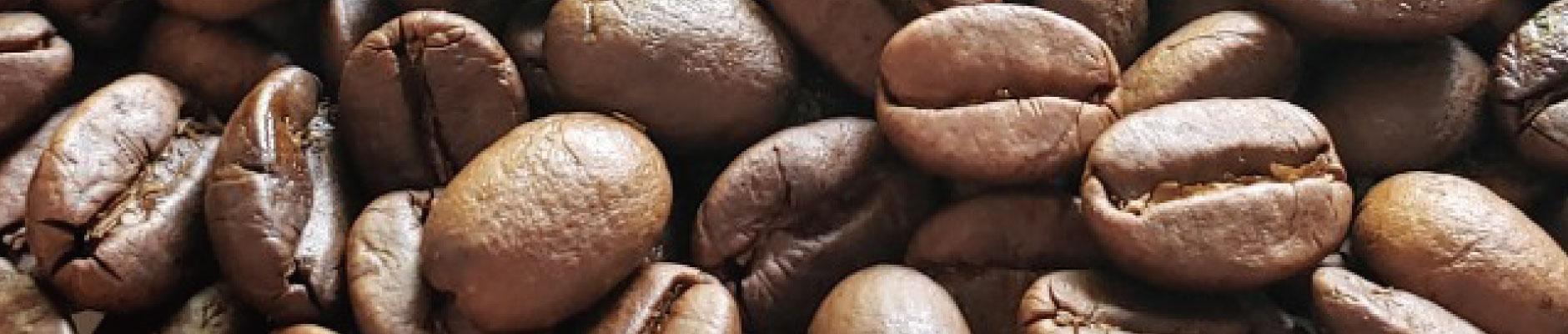 コーヒー焙煎生豆|コーヒー/珈琲